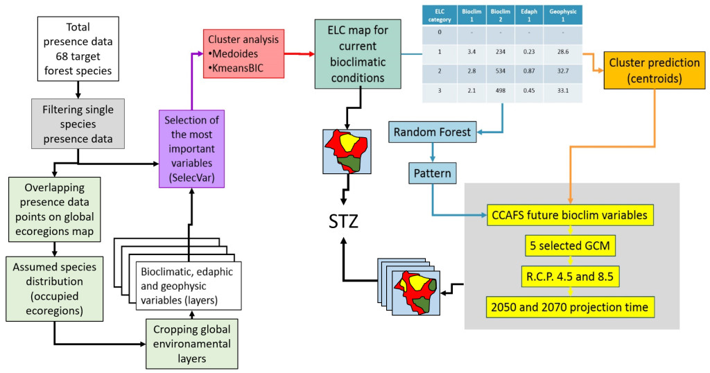 Process that made spatio-temporal STZs possible for 68 prioritized tree species in Asia